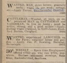 Newspaper Smallcombe